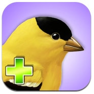 IBird Backyard app