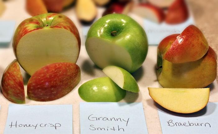 Apples Experiment