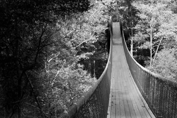 Hanging Bridge | Foxfire Mountains