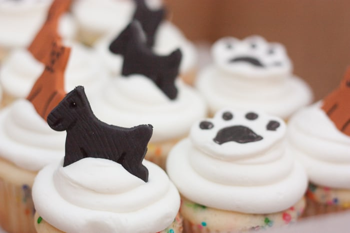 {Give-Back Birthday Party Alternative} Consider Humane Society Donations as a gift alternative...