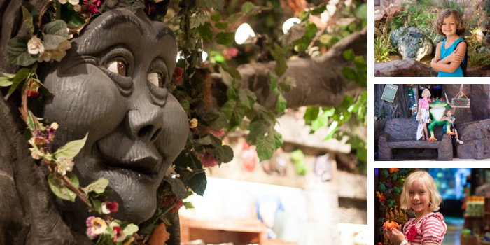 Rain Forest Cafe - Lake County