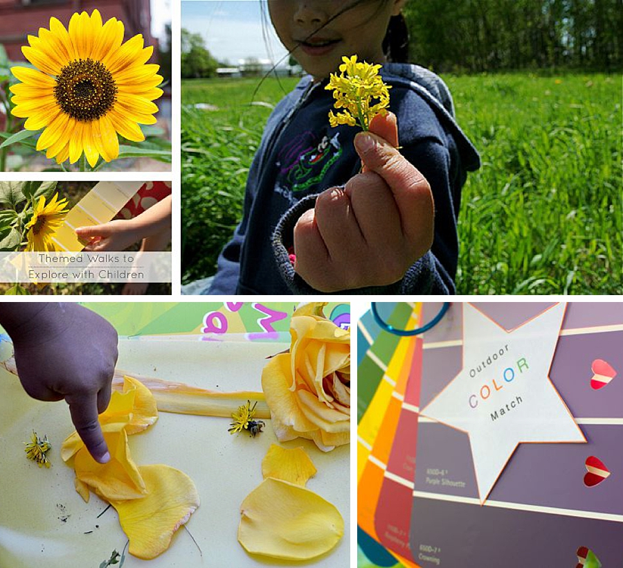 A colalge including a sunflower, a child holding a wild flower, and a boy pointing to a rose while a fall outdoor game — a color hunt.