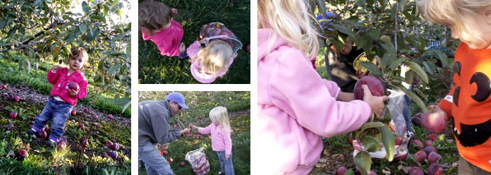 {10 Must-Try Ideas for Outdoor Fall Play} *Including a trip to the apple orchard