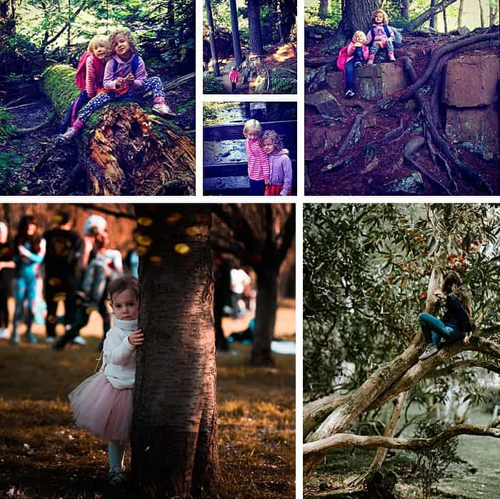 Collage of photos of kids hiking outside and sitting on trees.