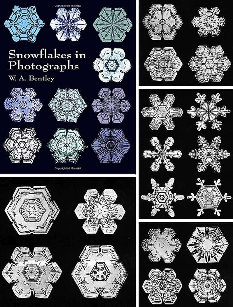 Snowflakes in Photographs Book