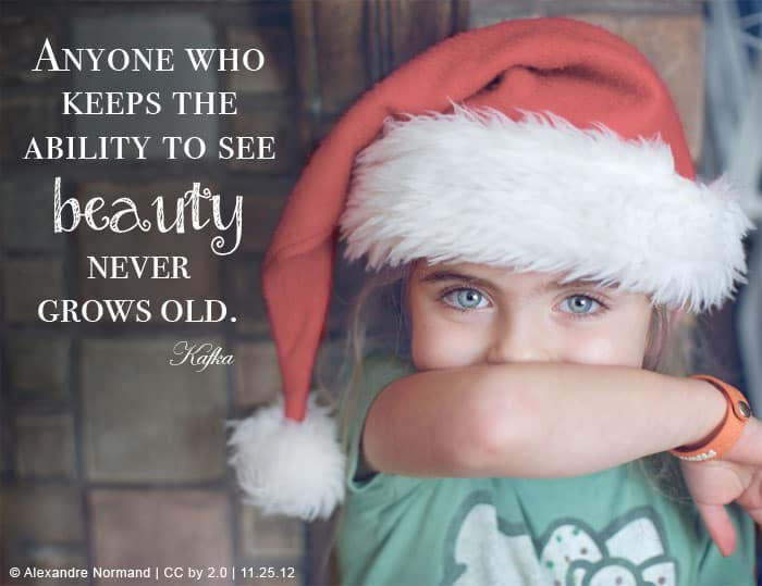 Anyone who keeps the ability to see beauty never grows old. ~Kafka