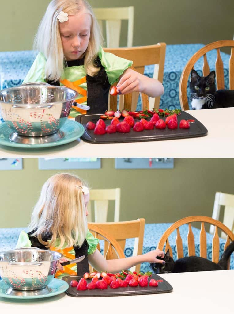 """Harry Potter Potions Lab *Love the recipe for """"Dragon's Blood"""" aka strawberry syrup to mix with lemonade."""