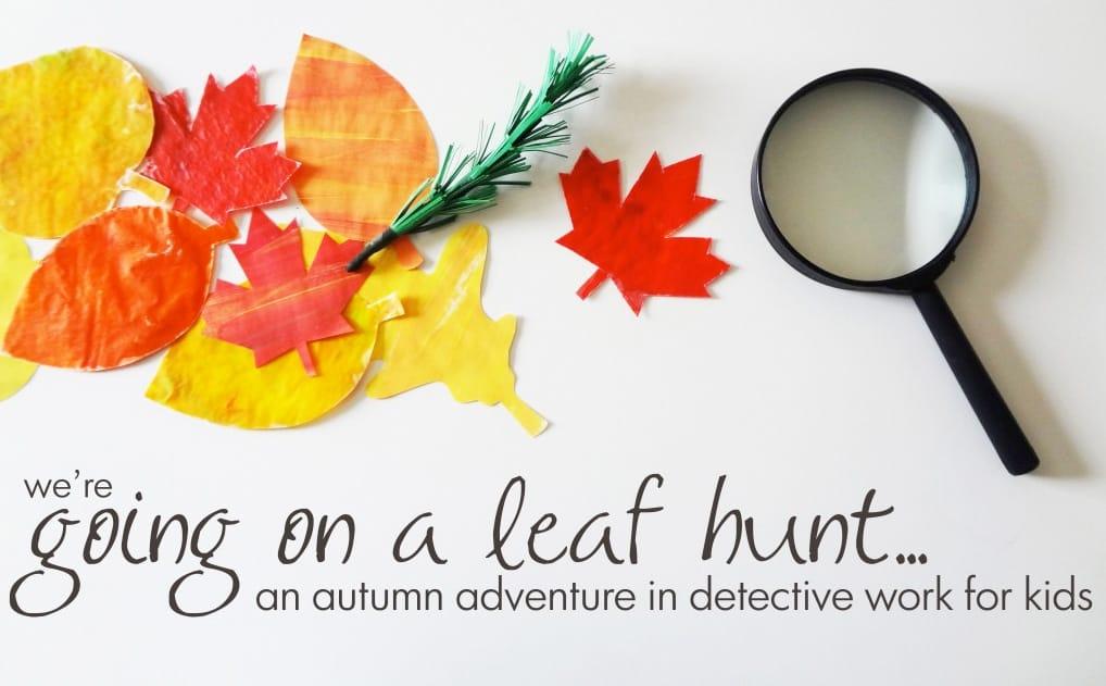 leaf-hunt