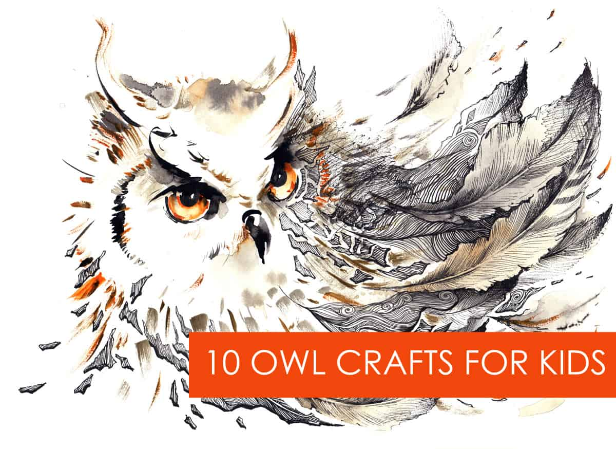 what a hoot 10 owl crafts for kids lasso the moon
