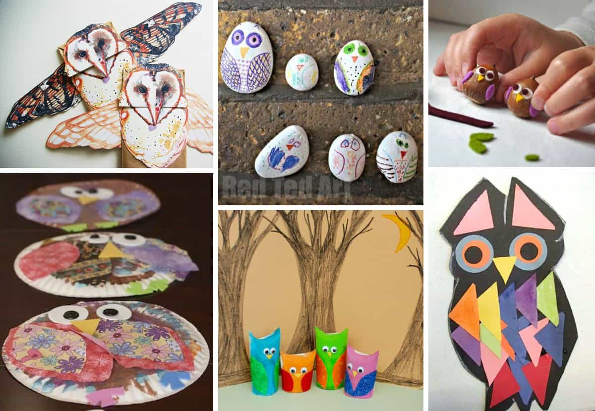 what a hoot 10 owl crafts for kids saving this for later - Owl Pictures For Kids