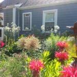 "The Joy of ""Chaos Gardening"""