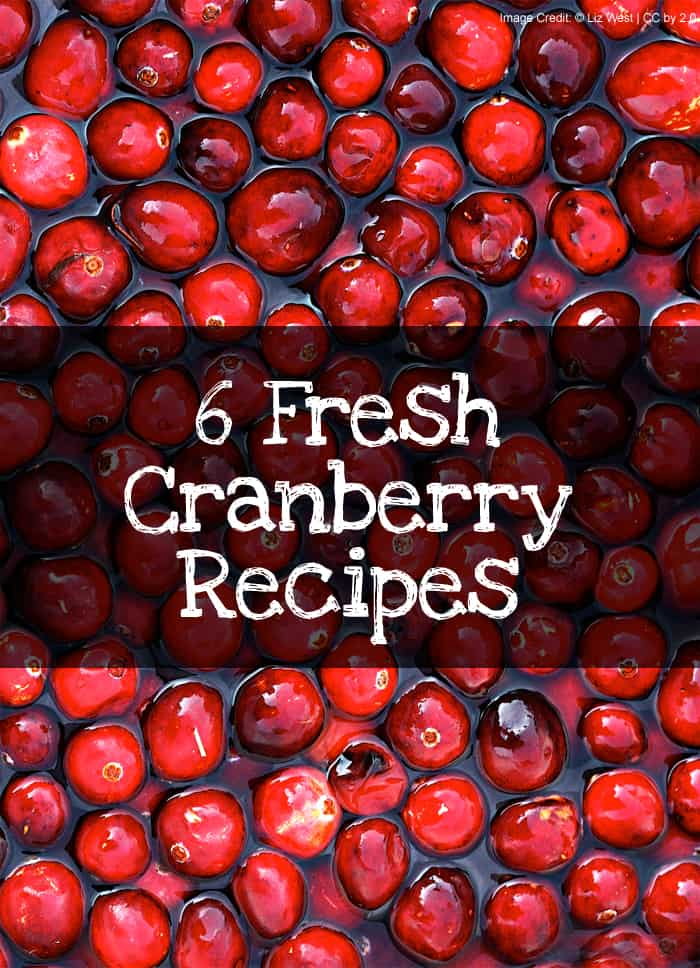 6 Fresh Cranberry Recipes #thanksgiving #christmas *love the cream cheese cranberry bars recipe. YUM.