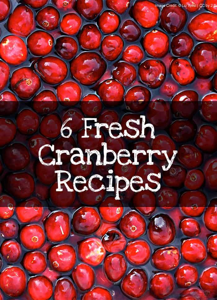 6 Fresh Cranberry Recipes #thanksgiving #christmas *love the cream cheese cranberry bars recipe. YUM.