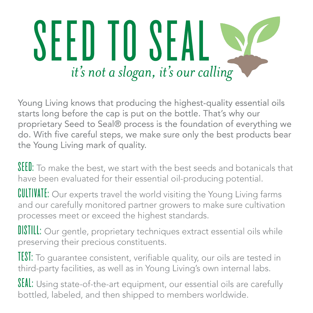 ylu-seed-to-seal-infographic-1024x1024