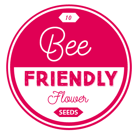 10 Bee-Friendly Flowers *Saving this post on planting a bee and butterfly garden
