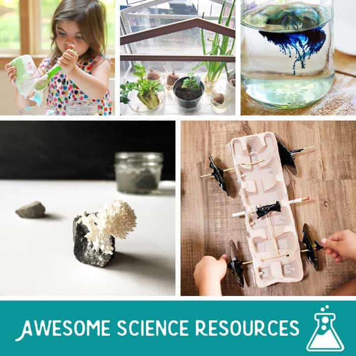 Summer Discovery: A Plethora of Science Inspiration for Kids + Parents
