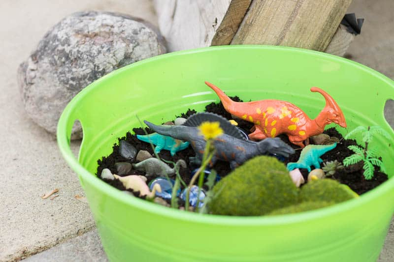 Dollar Store Dinosaur Garden: So simple, so cute.