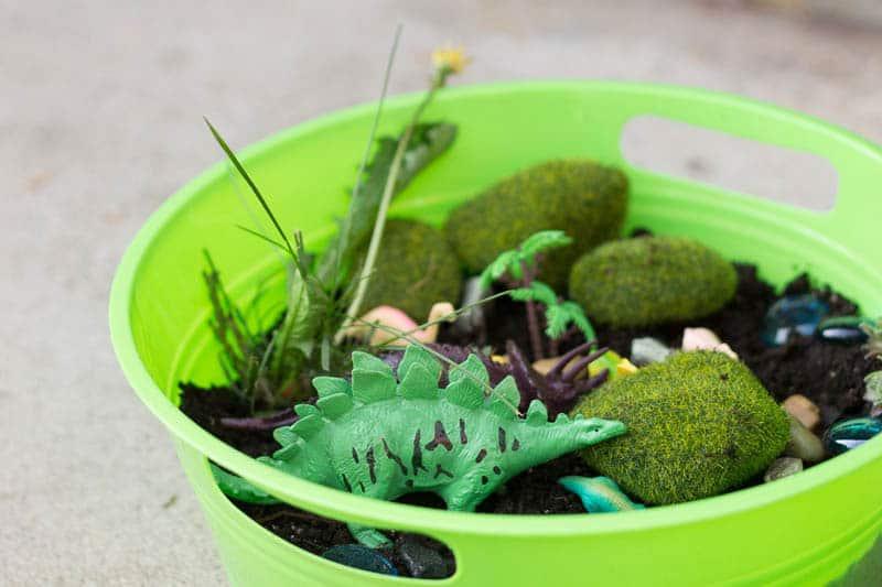"Family Garden Project: Dinosaur ""Fairy"" Garden"