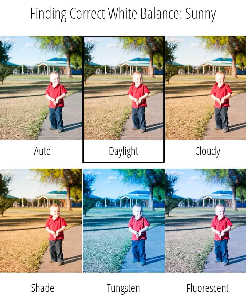 DaylightGrid
