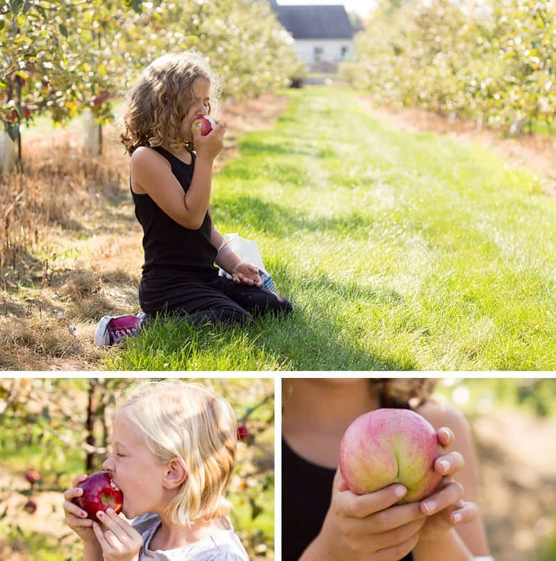 20 Fun Fall Activities For Kids That Moms Will Secretly Love: Unique and family-friendly autumn activities and children and adults will love *This is a great list. Saving it for later. Love the apple orchard!