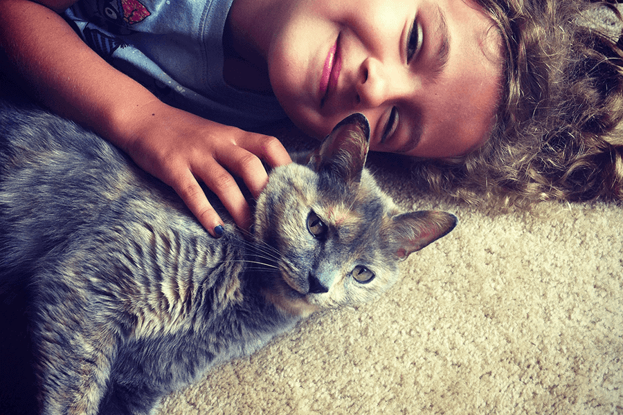 You Know You've Raised Your Kids to Be Cat People When…