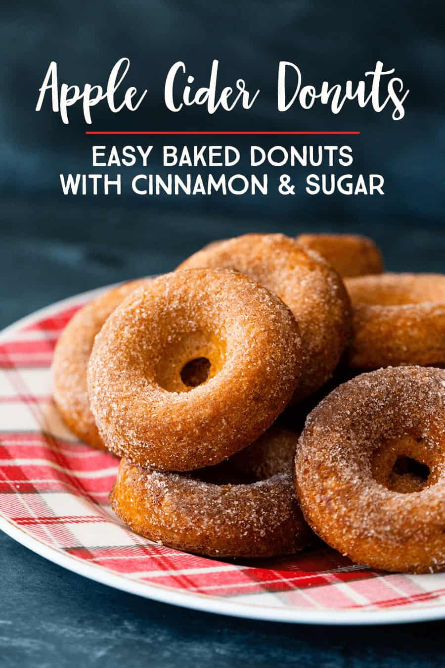 Easy Baked Apple Cider Donuts With Classic Cinnamon and Sugar Coating: This recipe is a MUST TRY autumn family tradition #recipe #donuts *Love these ideas and how easy these baked donuts look!