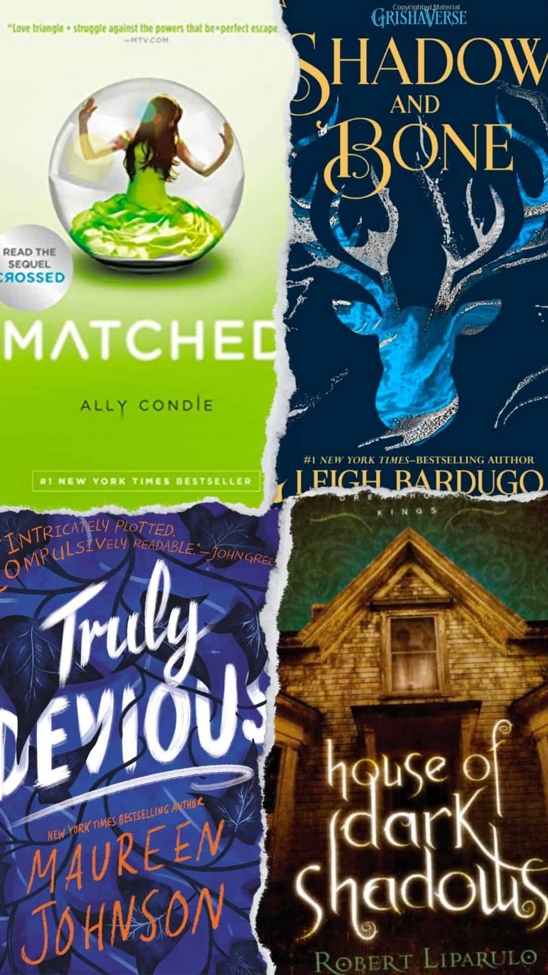 Book series for teens including Matched, Truly Devious, Shadow and Bone, and House of Darkness book covers.