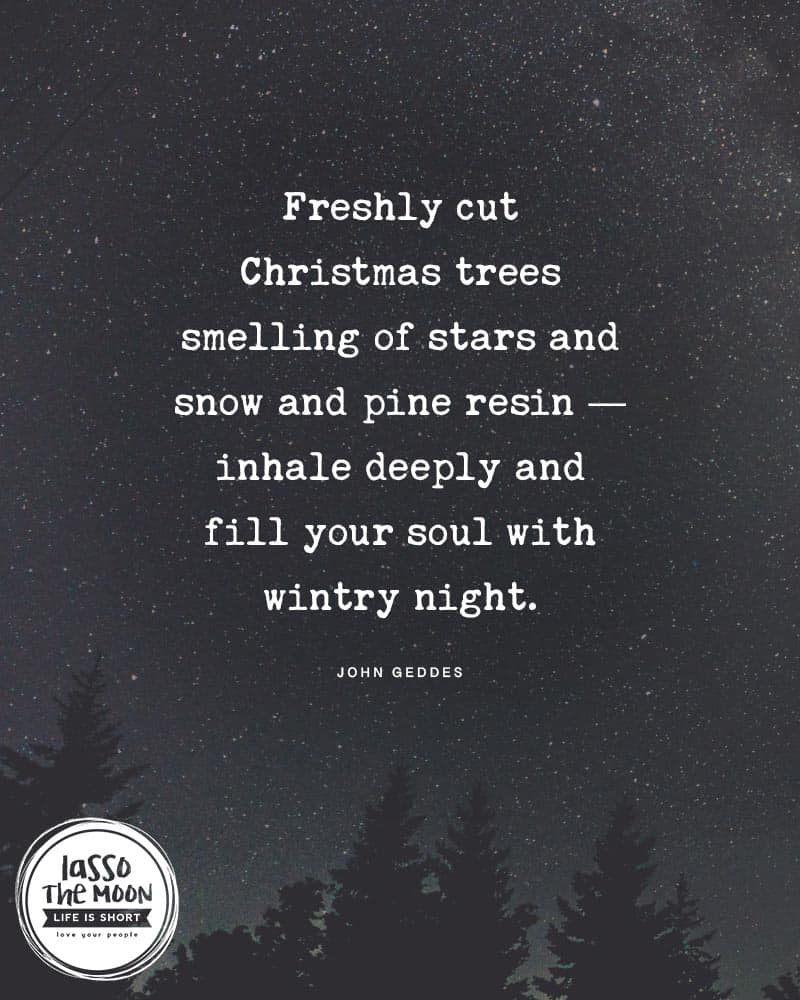 "A nigth sky with star and a line of pine trees with the following quote over top, ""Freshly cut Christmas trees smell of stars and snow and pine resin — inhale deeply and fill your soul with wintry night."""
